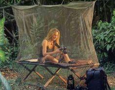 wordpress mosquito nett